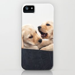 two puppy Labradors in  basket iPhone Case