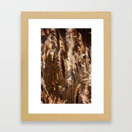 Sea Grasses Framed Art Print