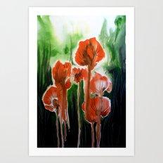 wild poppies II Art Print