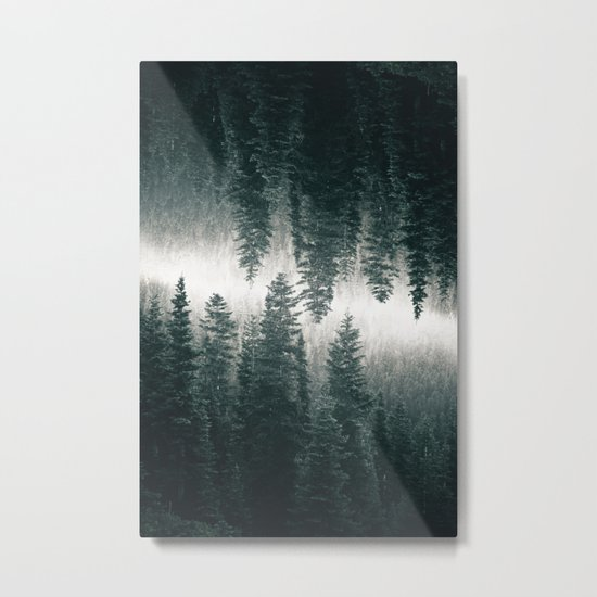 Forest Reflections XII Metal Print