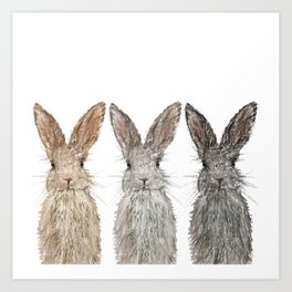 Triple Bunnies Art Print