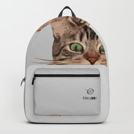 Cat on Gray Backpack