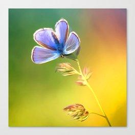 Artemis Lavender | Butterfly Oil Painting Canvas Print