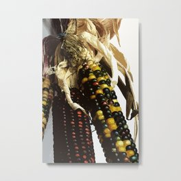 Indian Sweetcorn Metal Print