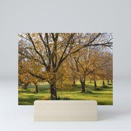 Autumn in the Orchard Mini Art Print