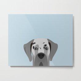 Great Dane Dog Portrait Metal Print