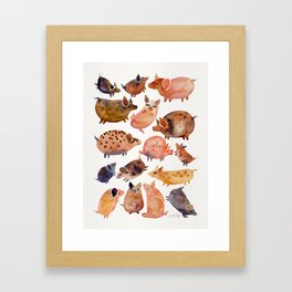 Pig Collection Framed Art Print