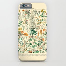 Floral Diagram // Fleurs IV by Adolphe Millot 19th Century French Science Textbook Artwork iPhone Case