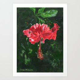 Flamenco by Teresa Thompson Art Print