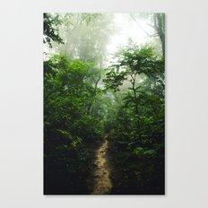 Pictured Rocks Pathway Canvas Print