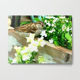 Flowers and Bird seed Metal Print