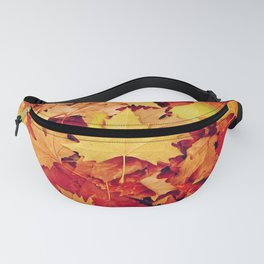 Indian Summer 6 Fanny Pack