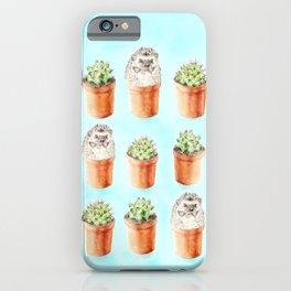 Hedgehog Watercolor Cactus Terra Cotta Pots iPhone Case