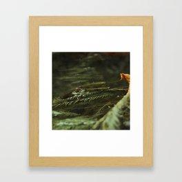 Resurface Framed Art Print