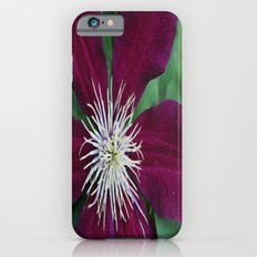 Beauty of Nature Slim Case iPhone 6s