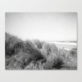 "STINSON AMMOPHILIA - ILFORD FP4+ - (4x5"" film) Canvas Print"
