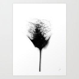 Sex Flower 2 Art Print