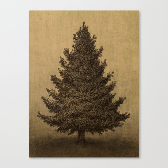 Lonely Pine  Canvas Print