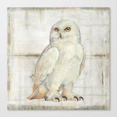 SnowOwl Canvas Print