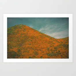 California Poppies 031 Art Print