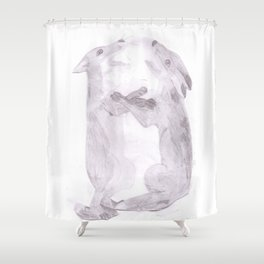 fighting foxes Shower Curtain
