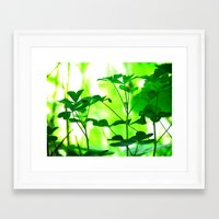 clover Framed Art Prints featuring Clover by Bella Mahri-PhotoArt By Tina