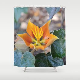 Fremontodendron Blossom Shower Curtain