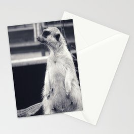 The Observent Meerkat Stationery Cards