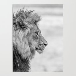 Chrome Lion King Poster