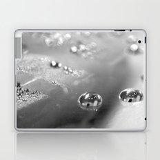 Two BW Laptop & iPad Skin