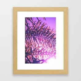 Palms in Afterglow Framed Art Print