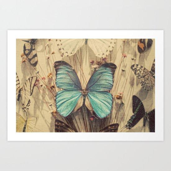 Butteryflies Art Print
