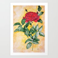Redroseolia Art Print