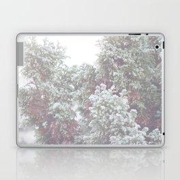 Winter Evergreen Laptop & iPad Skin