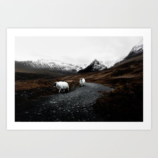 SHEEP - MOUNTAINS - SNOW - ROAD - PHOTOGRAPHY - FUNNY Art Print