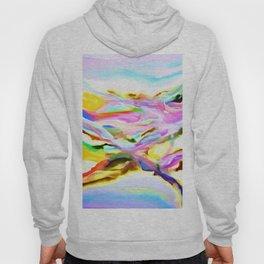 Coastal Color Abstract Hoody