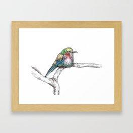 Mr. Grumpypants Rollerbird Framed Art Print