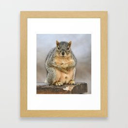 Yes, May I Help You? Framed Art Print