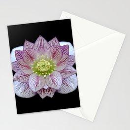Hellebore Flower Symmetry Stationery Cards