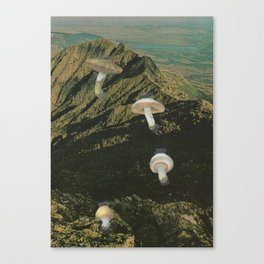 171.  Canvas Print