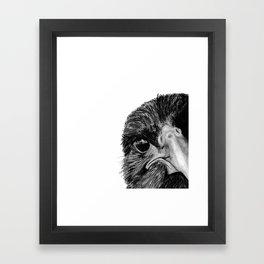 The Secret of the Raven Framed Art Print