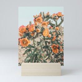Cholla, Orange Flowering Cactus Mini Art Print