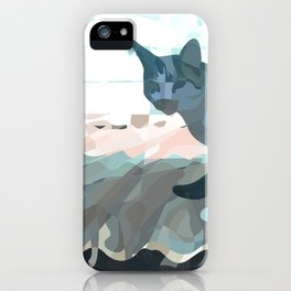 Looking Back 2017 iPhone Case