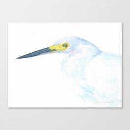 Green Eyed Heron Canvas Print