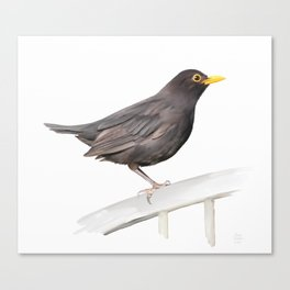 Ms. Blackbird is Brown Canvas Print