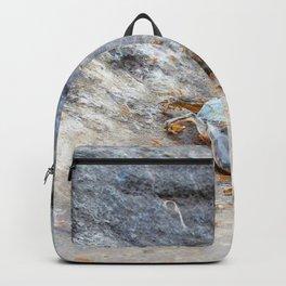 Watercolor Death 07, Ventana Canyon, Arizona, Not so Incredible Journey Backpack