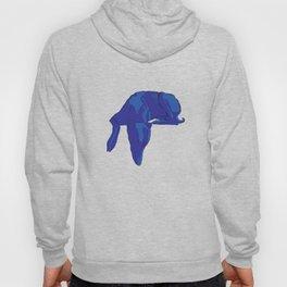 Blue/Grey hound Hoody