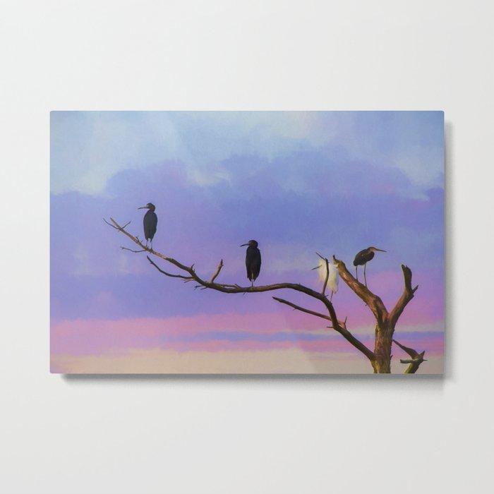 Coastal Birds at Sunset Metal Print
