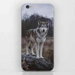 Wolf on Log iPhone Skin