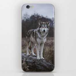 Wolf on Log iPhone Skin